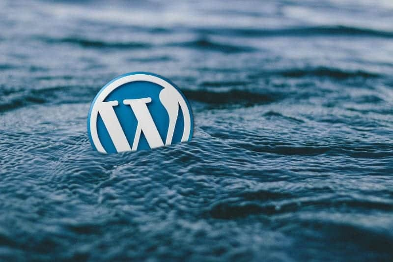 5 Essential WordPress Plugins for Your Business Website